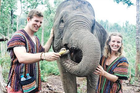 Wandering Wilsons in Thailand